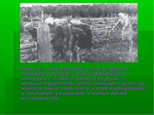 Отцы их, наши прадеды, ушли на фронт защищать Родину, а наши прабабушки оста