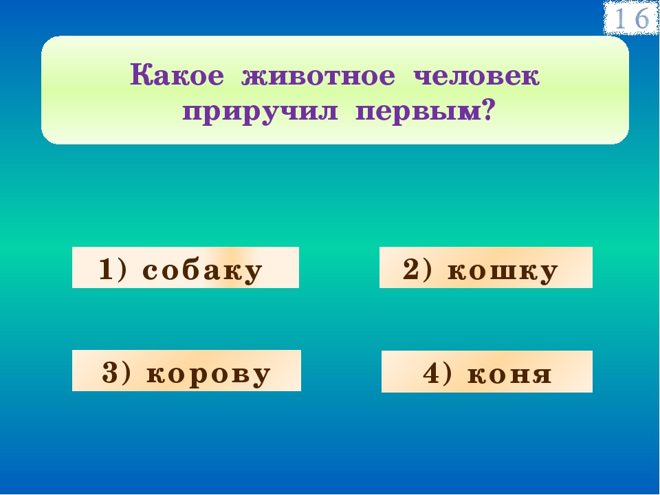 1) собаку 3) корову 4) коня 2) кошку Какое животное человек приручил первым?