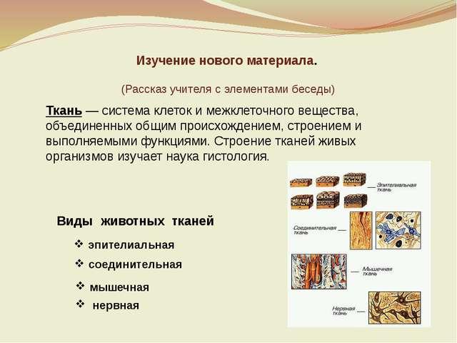 Ткань — система клеток и межклеточного вещества, объединенных общим происхожд...