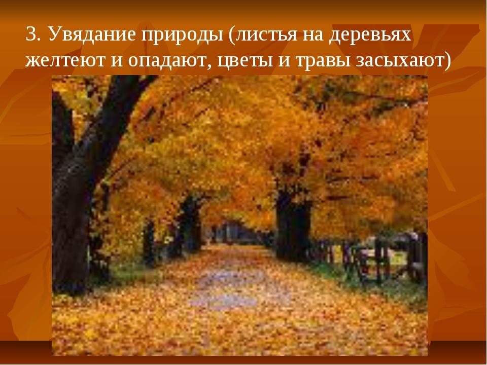 3. Увядание природы (листья на деревьях желтеют и опадают, цветы и травы засы...
