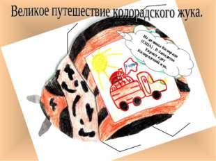 Из долины Колорадо (США) . В Западную Европу едет Колорадский жук.