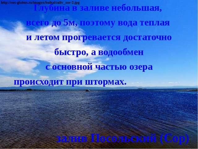 Глубина в заливе небольшая, всего до 5м, поэтому вода теплая и летом прогрева...