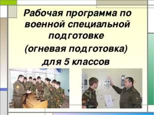 Рабочая программа по военной специальной подготовке (огневая подготовка) для