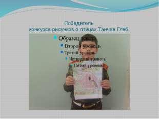 Победитель конкурса рисунков о птицах Танчев Глеб.