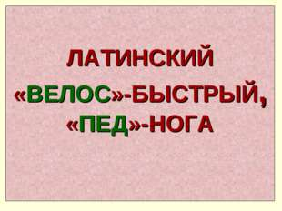 ЛАТИНСКИЙ «ВЕЛОС»-БЫСТРЫЙ, «ПЕД»-НОГА