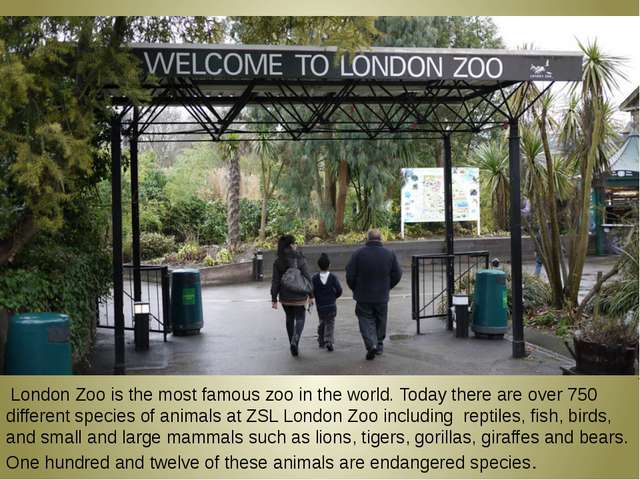 London Zoo is the most famous zoo in the world. Today there are over 750 dif...