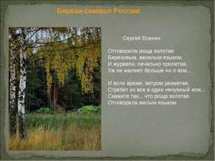 Береза-символ России.  Сергей Есенин Отговорила роща золотая Березовым, вес