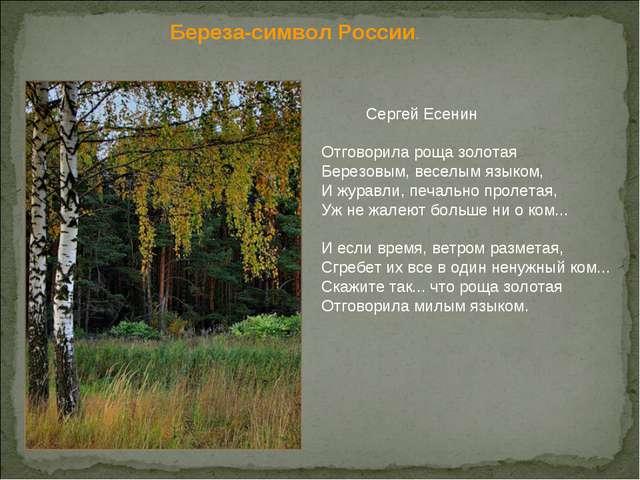 Береза-символ России.  Сергей Есенин Отговорила роща золотая Березовым, вес...