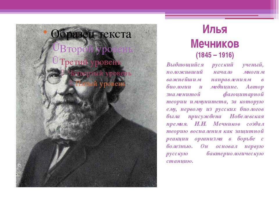Илья Мечников (1845 – 1916) Выдающийся русский ученый, положивший начало мног...