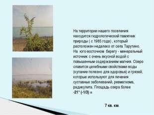 На территории нашего поселения находится гидрологический памятник природы ( с