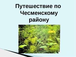 Путешествие по Чесменскому району