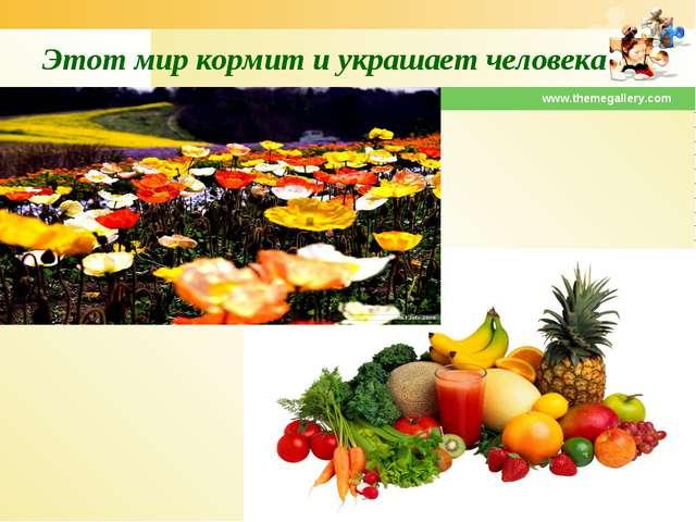 www.themegallery.com Этот мир кормит и украшает человека www.themegallery.com