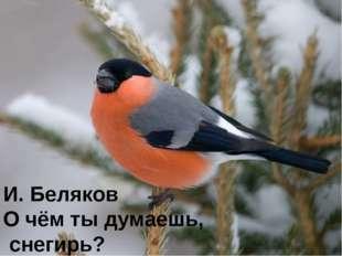 И. Беляков О чём ты думаешь, снегирь?