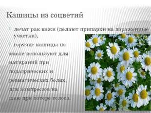 Кашицы из соцветий лечат рак кожи (делают припарки на пораженные участки), го