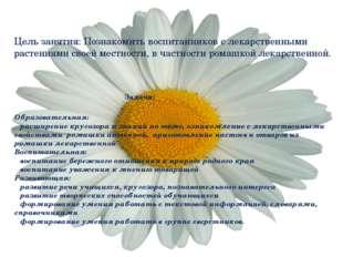 Цель занятия: Познакомить воспитанников с лекарственными растениями своей ме