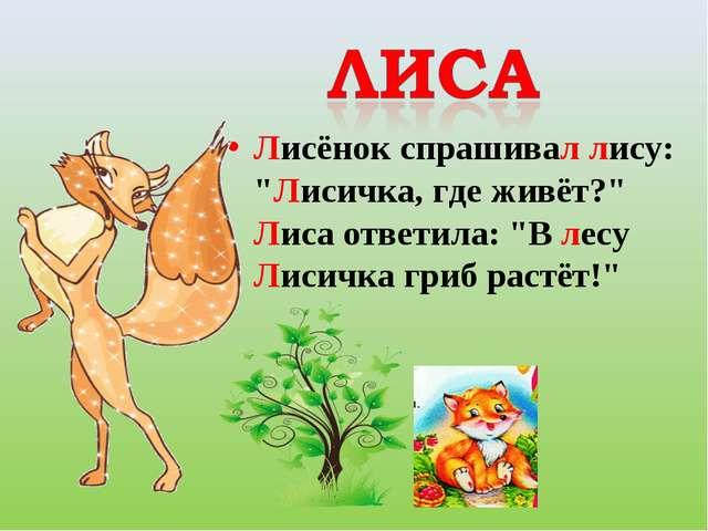 """Лисёнок спрашивал лису: """"Лисичка, где живёт?"""" Лиса ответила: """"В лесу Лисичк..."""