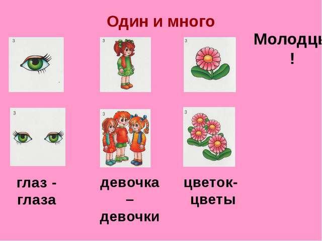 Один и много глаз - глаза девочка – девочки цветок- цветы Молодцы!