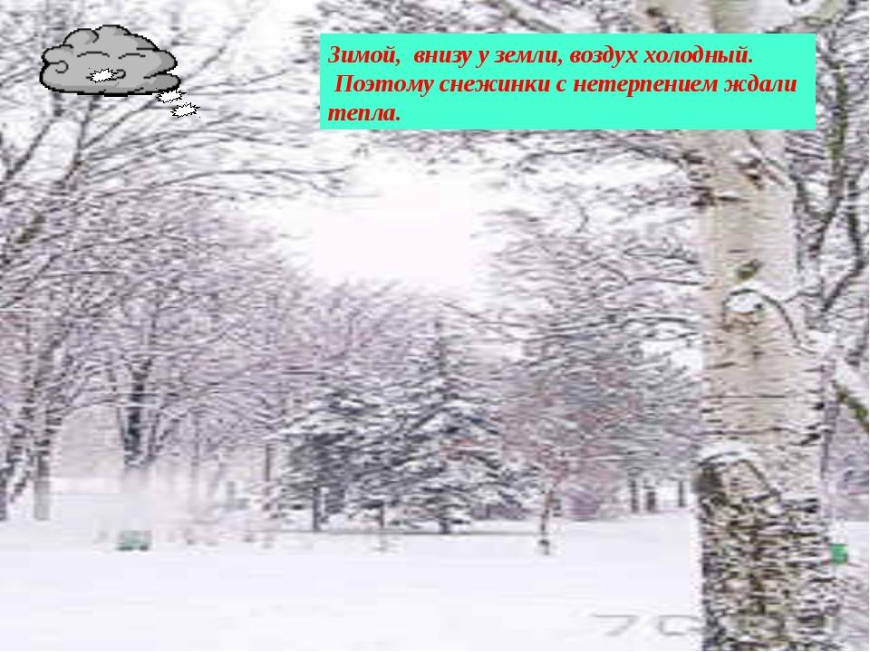 Зимой, внизу у земли, воздух холодный. Поэтому снежинки с нетерпением ждали т...