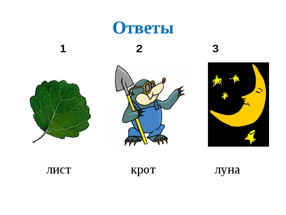 Ответы лист крот луна 1 2 3