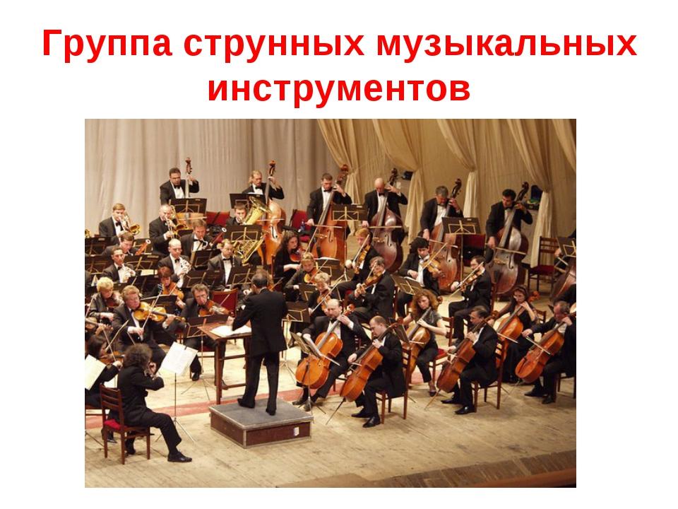 Группа струнных музыкальных инструментов