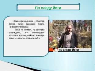 Самая грозная сила — Николай Валуев лично приезжал ловить «снежного человека