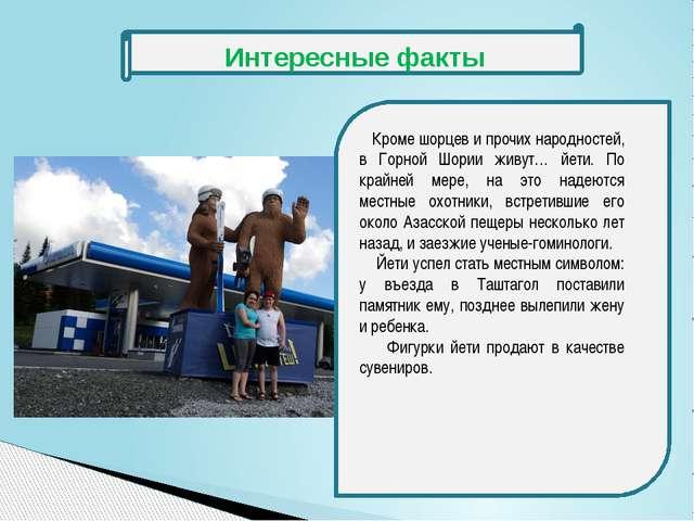 Кроме шорцев и прочих народностей, в Горной Шории живут… йети. По крайней ме...