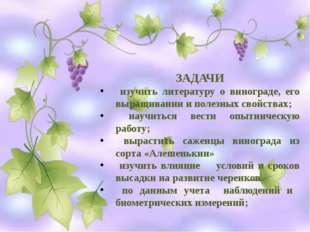 ЗАДАЧИ изучить литературу о винограде, его выращивании и полезных свойствах;