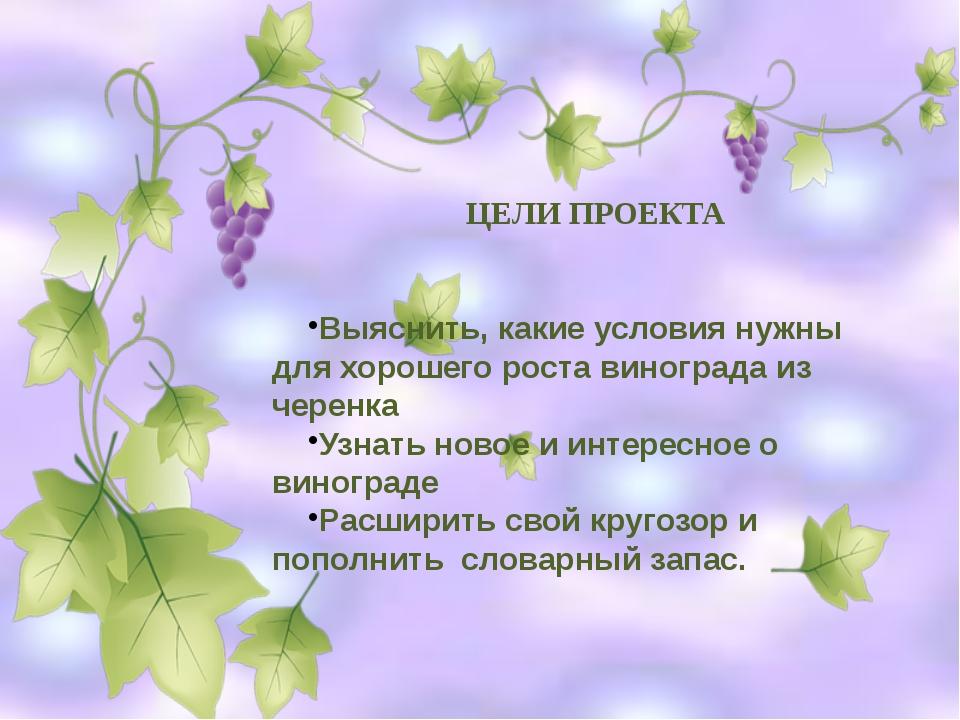ЦЕЛИ ПРОЕКТА Выяснить, какие условия нужны для хорошего роста винограда из че...