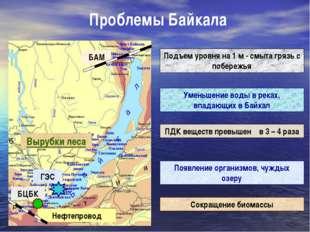 Проблемы Байкала Вырубки леса Подъем уровня на 1 м - смыта грязь с побережья