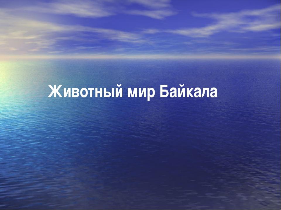 Животный мир Байкала