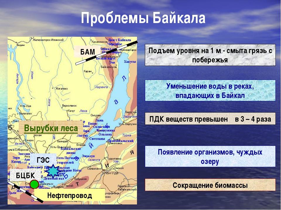 Проблемы Байкала Вырубки леса Подъем уровня на 1 м - смыта грязь с побережья...