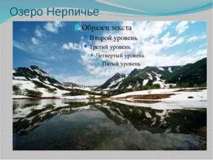 Озеро Нерпичье