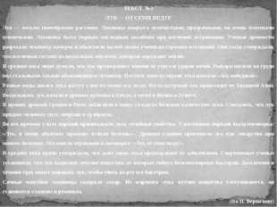 ТЕКСТ №3 ЛУК — ОТ СЕМИ НЕДУГ Лук — весьма своеобразное растение. Луковица пок