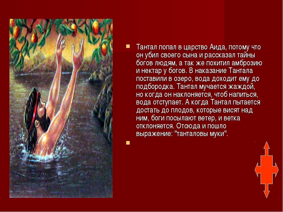 Тантал попал в царство Аида, потому что он убил своего сына и рассказал тайн...