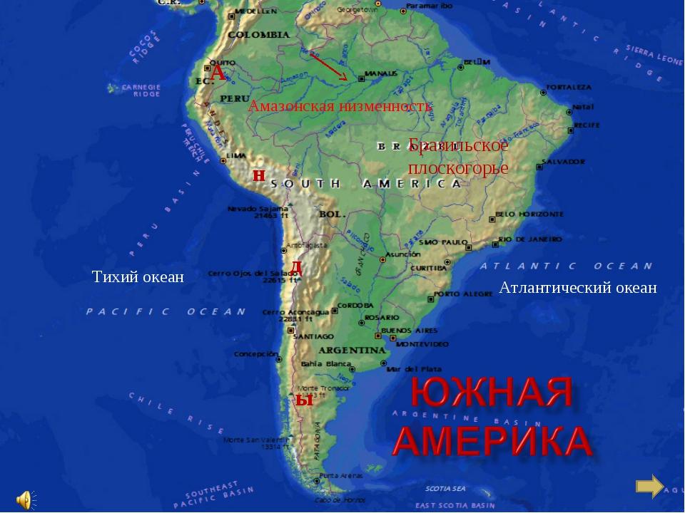 Тихий океан Атлантический океан Амазонская низменность Бразильское плоскогорь...