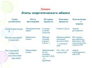 Проверка Этапы энергетического обмена Этапы катаболизмаМесто прохожденияИс