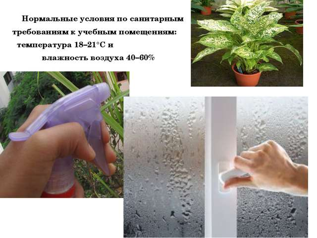Нормальные условия по санитарным требованиям к учебным помещениям: температу...