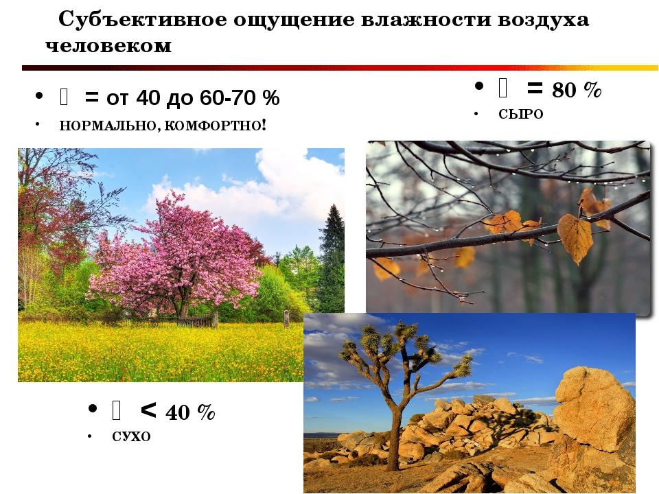 Субъективное ощущение влажности воздуха человеком ϕ < 40 % СУХО ϕ = 80 % СЫР...