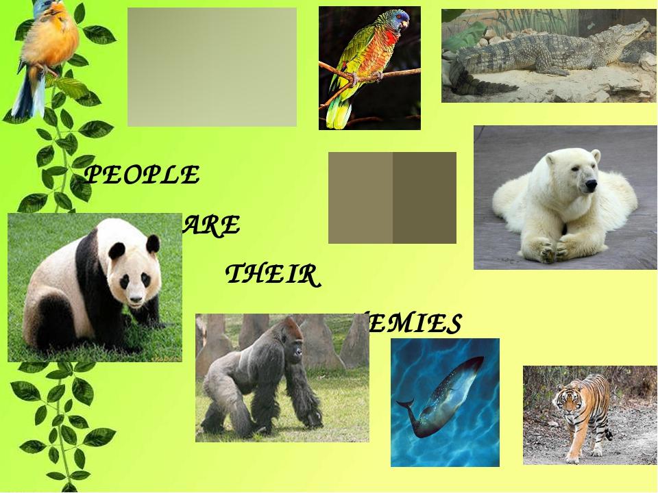 PEOPLE ARE THEIR ENEMIES