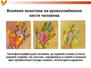 Влияние никотина на кровоснабжение кисти человека Теплофотография руки челове