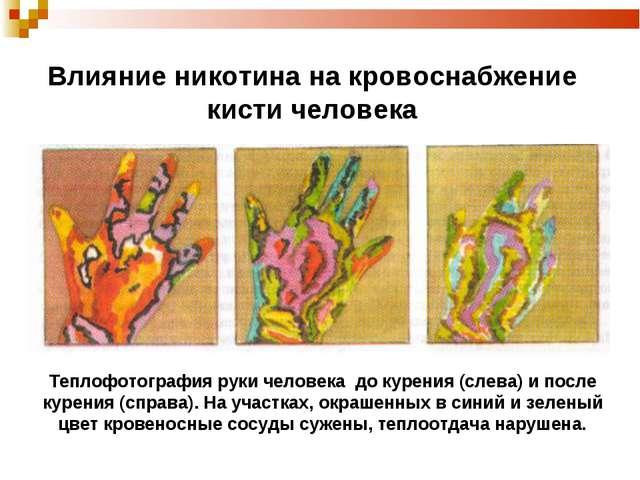 Влияние никотина на кровоснабжение кисти человека Теплофотография руки челове...