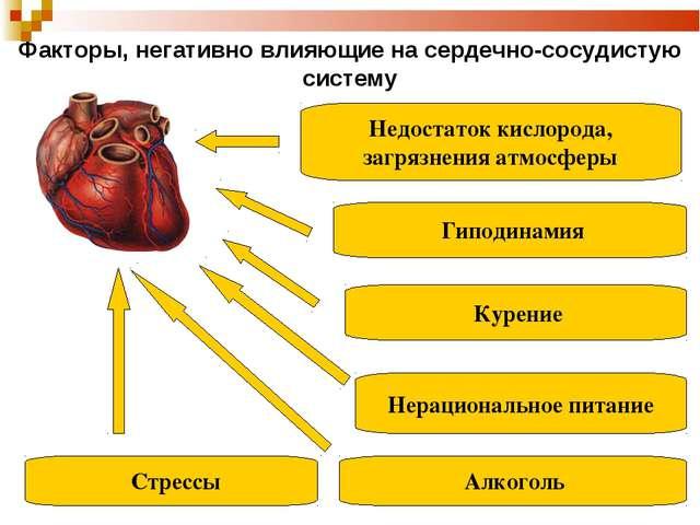 Гиподинамия Алкоголь Курение Нерациональное питание Недостаток кислорода, за...