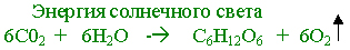 hello_html_345c360c.jpg