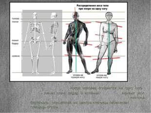 Когда человек опирается на одну ногу – линии плеч, бедер и коленей меняют уго