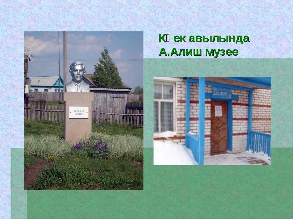 Көек авылында А.Алиш музее