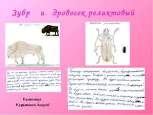 Зубр и дровосек реликтовый Выполнил Курышкин Андрей