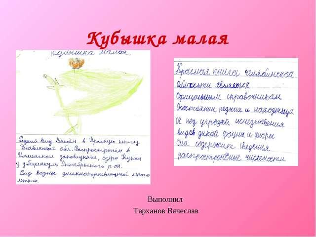 Кубышка малая Выполнил Тарханов Вячеслав