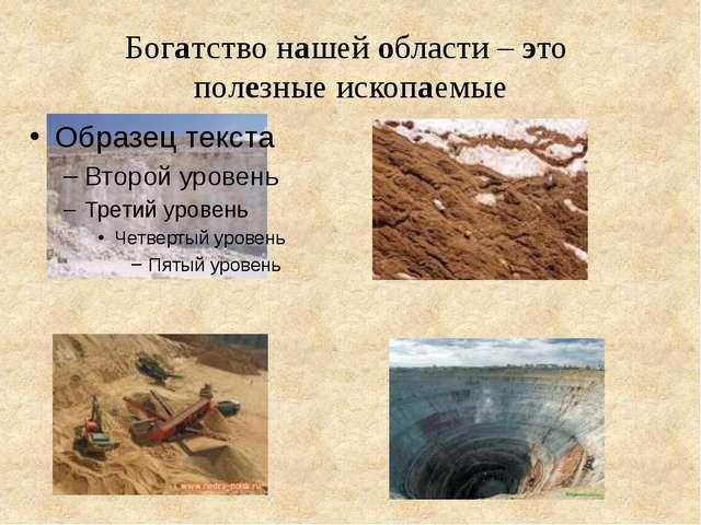 Богатство нашей области – это полезные ископаемые