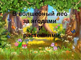В волшебный лес за ягодами И растениями