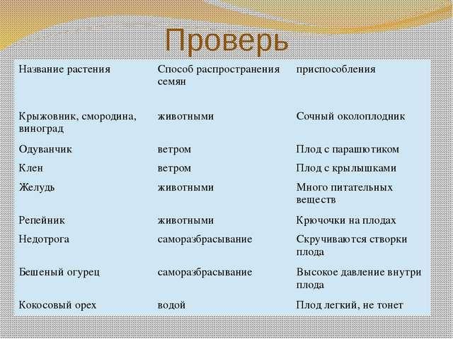 Проверь Название растения Способраспространения семян приспособления Крыжовни...